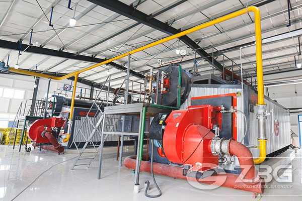 D Type Package Water Tube Boiler