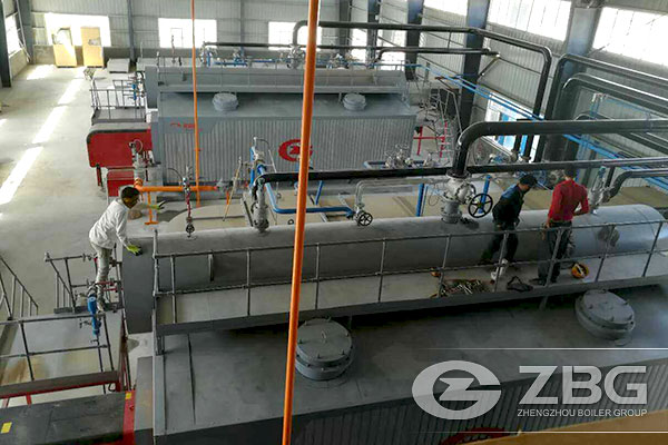 Two Sets of 20 Tons Gas Boiler in Iran