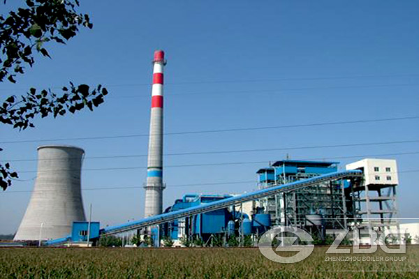 Biomass Fuel for Power Plant
