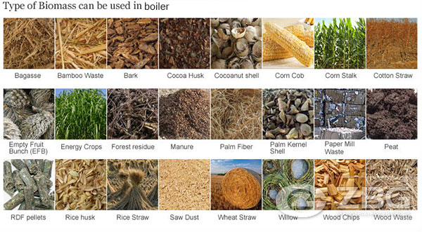 Analysis of Biomass Boiler Fuel
