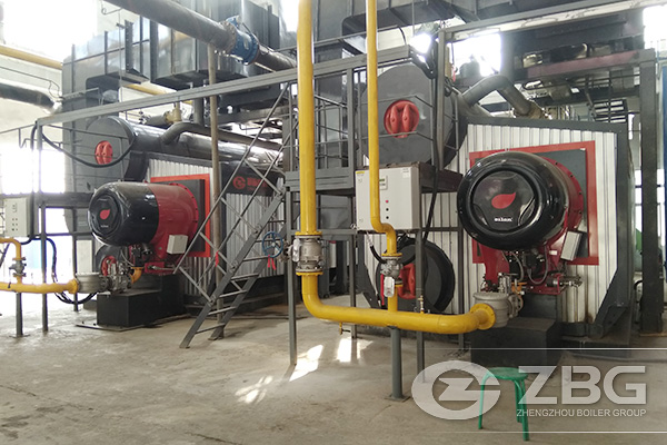 Two Sets of 35 Tons Gas Fired Power Plant Boiler