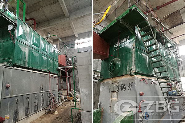 6T Biomass Solid Fuel Boiler for Food Company