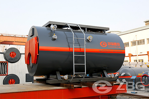 4 ton Gas Fired Boiler in Biotechnology Industry