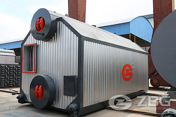 6 ton Chain Grate Boiler in Indonesia